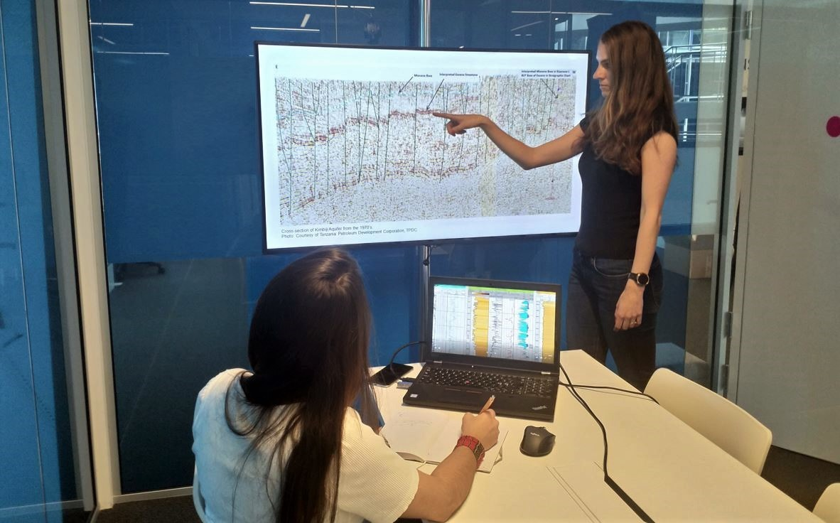 Seismic and well log interpretation 1